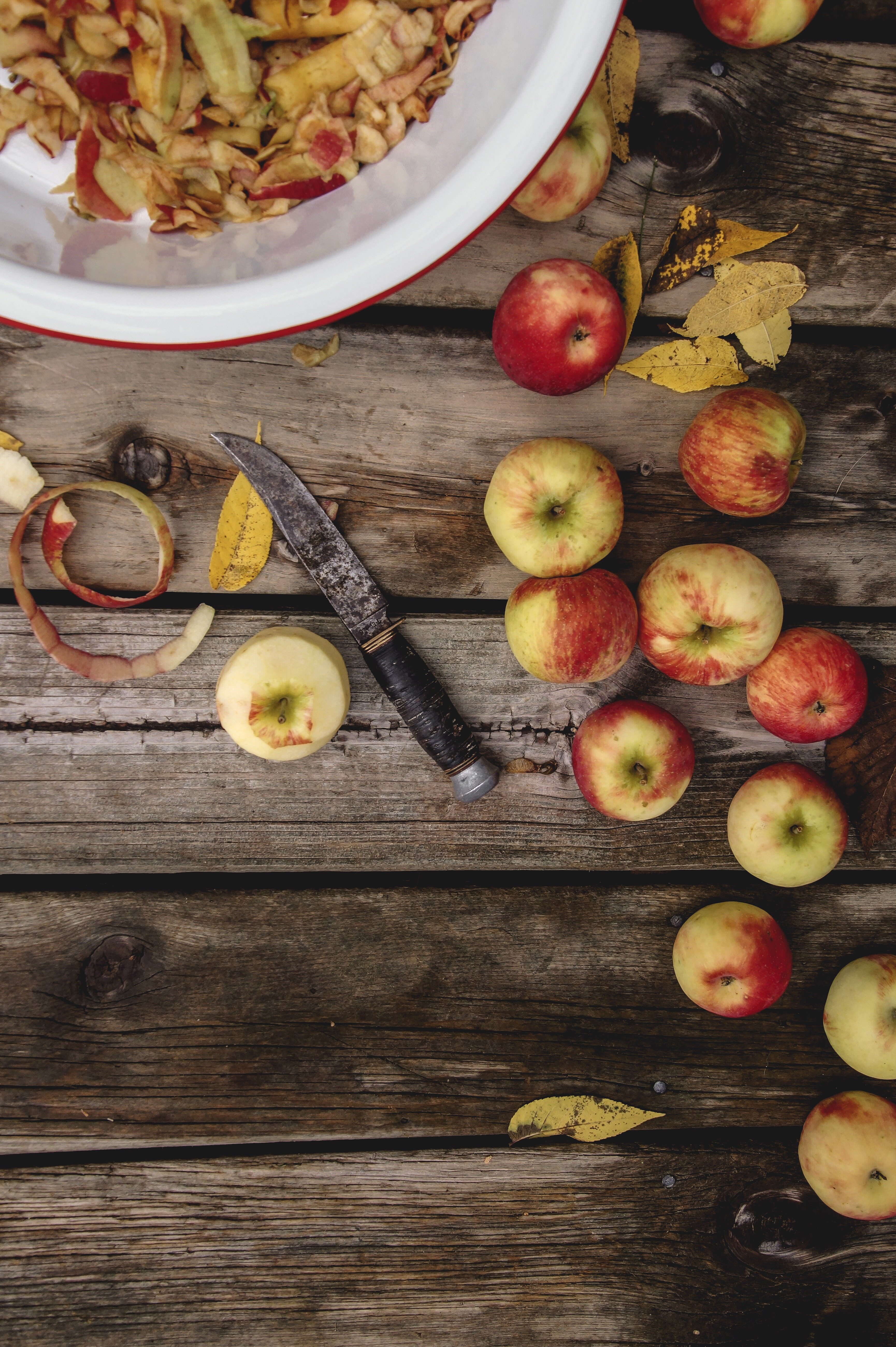 What can you make with apple peels, ways to use leftover apple peels, apple peel recipes, better than apple chips recipes, apple chips recipes, apple peel chips, apple peel panna cotta, apple recipes, easy apple dessert recipes, photos of fall